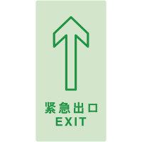 蓄光型地贴引导标识紧急出口 Light Storage Exit